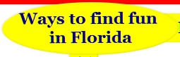 fun things to do in florida